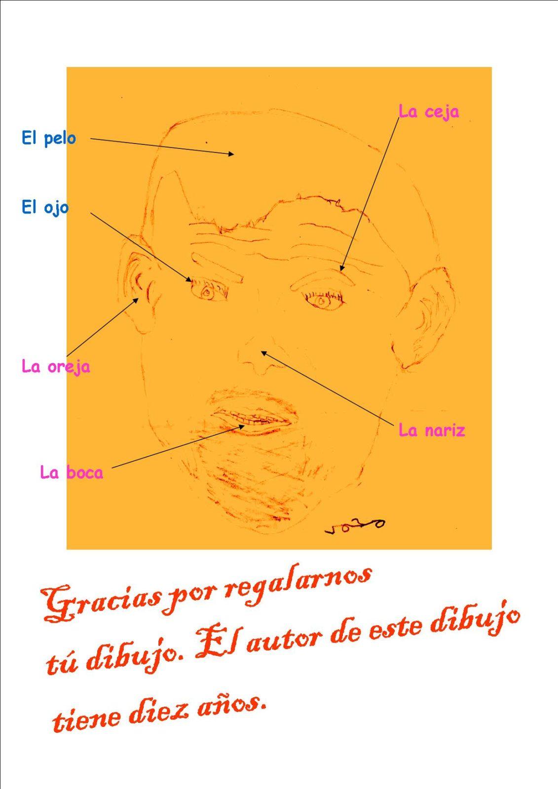 Free Spanish Body Parts Face School E Ltd Blog