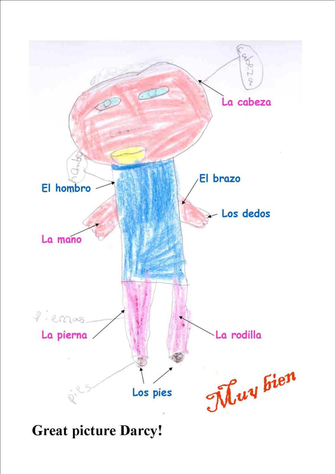 Free Spanish Body Parts School E Ltd Blog